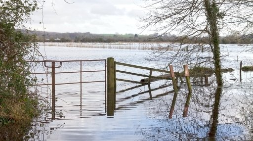 Foundation responds to local communities suffering from recent flooding